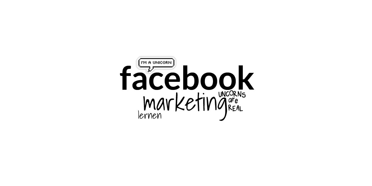 Facebook Marketing Kurs Online: Ad i fanów Crash Course dla menedżerów mediów społecznościowych